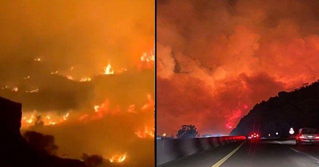 Suudi Arabistan'da dağlık alanda büyük orman yangını