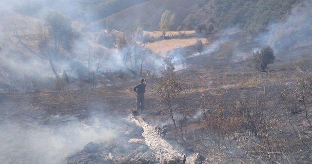 Tunceli'de iki noktada yangın çıktı
