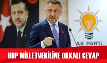 Cumhurbaşkanı Yardımcısı Oktay'dan HDP milletvekiline okkalı cevap