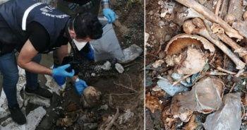 İnşaat alanından poşet içerisinde kafatasları çıktı