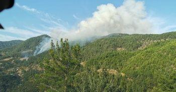Mersin'de orman yangını