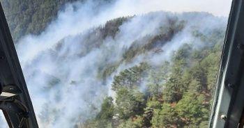 Mersin'de orman yangını nedeniyle 50 ev tahliye edildi