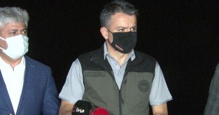 Bakan Pakdemirli'den Hatay'daki yangınla ilgili açıklama