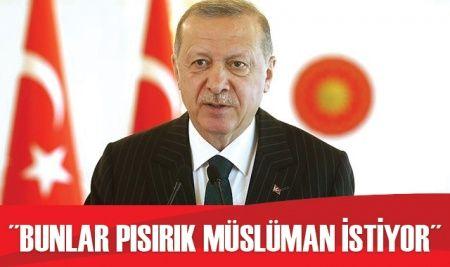 Cumhurbaşkanı Erdoğan: Bunlar pısırık Müslüman istiyor