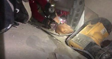 Depremde enkazda kalan İnci Okan'ın köpeği de kurtarıldı