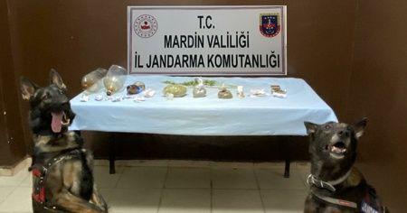 Mardin'de uyuşturucu operasyonu: 4 gözaltı