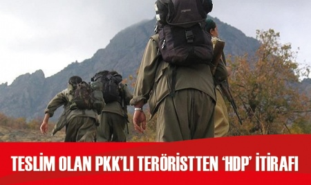 Teslim olan PKK'lı teröristten 'HDP' itirafı