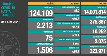 Türkiye'de koronavirüste son durum: 2213 yeni hasta, 75 can kaybı