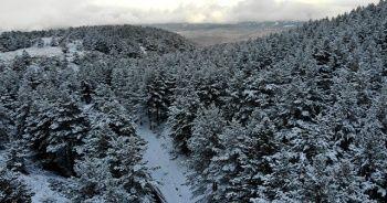 Beyaza bürünen Dumanlı Tabiat Parkı, görsel şölen oluşturdu