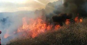 Bilecik'te makilik alanda yangın