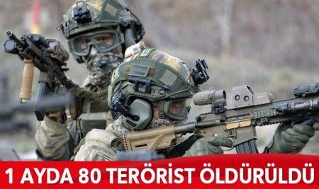 1 ayda 80 terörist öldürüldü