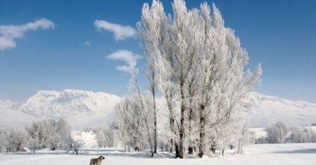 Doğu Anadolu'da dereler ve göletler buz tuttu