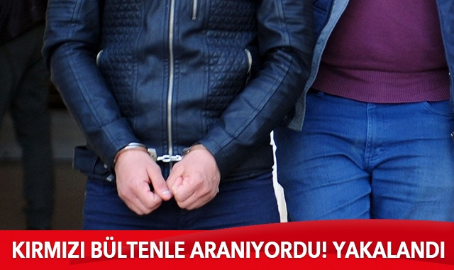 Kırmızı bültenle aranan PKK'lı terörist Şanlıurfa'da yakalandı