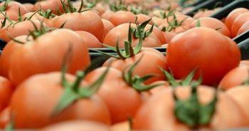 Rusya, Azerbaycan'dan domates ve elma alımını yasakladı
