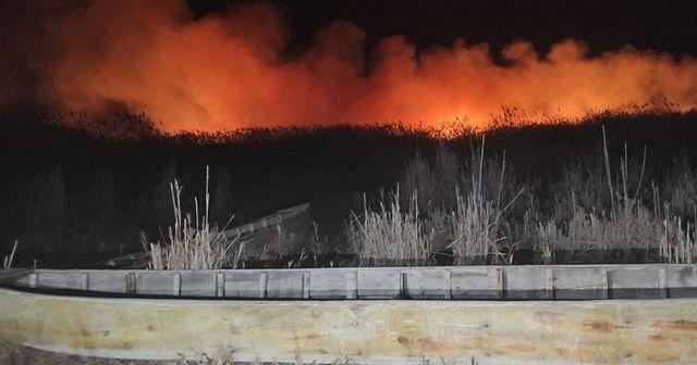 Eber Gölü'nde çıkan yangında yaklaşık 8 bin dekar kamışlık alan zarar gördü