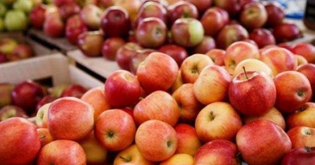 Kilosu 15 liraya elma mı olur?