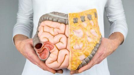 Geçirgen Bağırsak Sendromu (Leaky Gut) Nedir? Belirtileri ve Tedavileri Nelerdir?