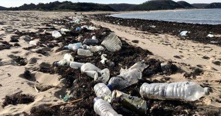 İstanbulluların akın ettiği sahil çöp yuvasına döndü