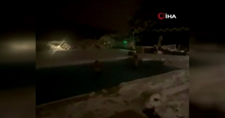 Josef sözünde durdu, buz tutmuş havuza atladı