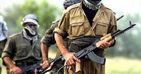 Mardin'de 1 terörist daha teslim oldu