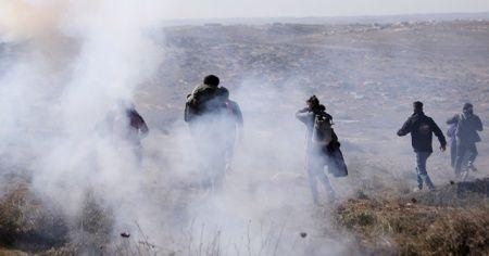 Yahudi yerleşimciler, Filistinli göstericilere köpeklerle saldırdı