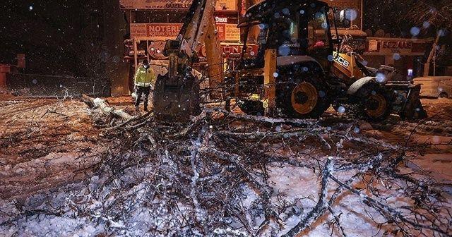 İstanbul'da bazı bölgelerde ağaçlar devrildi