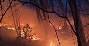 Akçakoca'daki orman yangını kontrol altına alındı