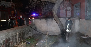 Bahçesindeki ağacı yakmaya çalışan bir kişi komşularının şikayetiyle gözaltına alındı