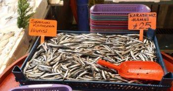 Hamsiye gelen av yasağı tüm balıkları etkiledi