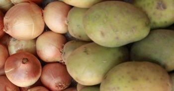 TZOB Başkanı: Eldeki patates ve soğanın acilen pazarlanması gerekmektedir