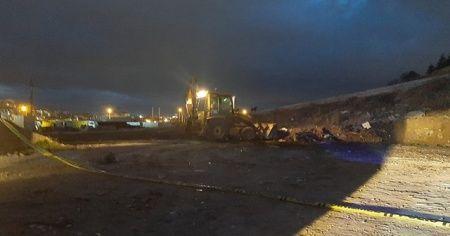 Boş arazide 20 ölü köpek bulundu