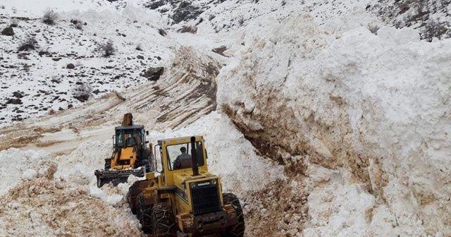 Çığ düşmesi sonucu kapanan köy yolu ulaşıma açıldı