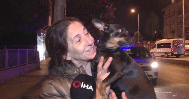 Üsküdar'da iş yerinde yangın çıktı, evin köpeği sahibini uyandırarak haber verdi