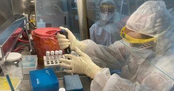 Çin aşısında yüzde 99,6 oranında antikor saptandı