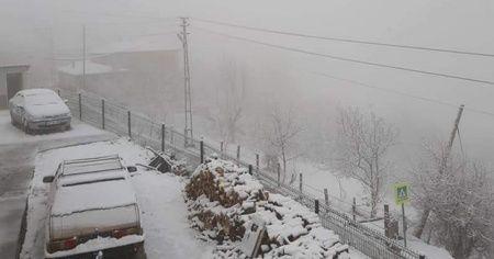 Samsun'a mart karı