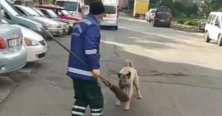 Temizlik görevlisi ile süpürgesini çalan köpek arasındaki kovalamaca