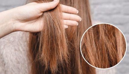 Yıpranmış Saçlar İçin Öneriler Yıpranmış Saçlara Ne İyi Gelir?