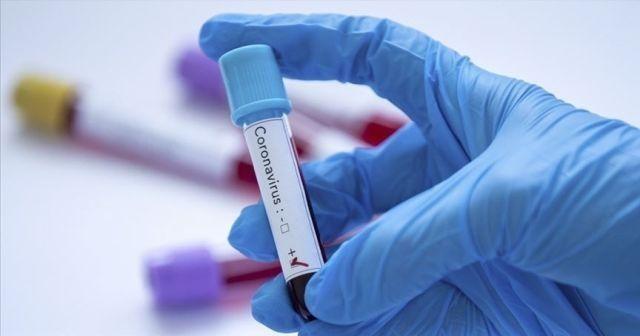 9 kişi koronavirüse yakalandı, mezra 10 gün karantinaya alındı