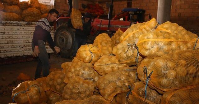 Depoda kalan patates, ihtiyaç sahiplerine ulaştırılıyor