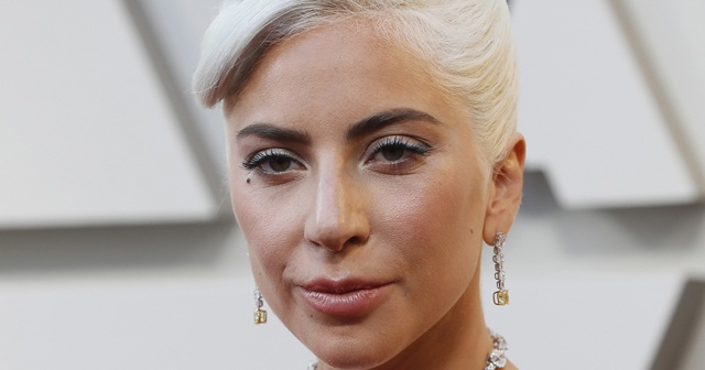 Lady Gaga'nın köpekleri için 5 gözaltı