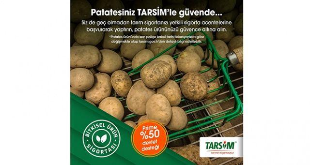 TARSİM: 'Patates ürününüz güvende'