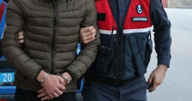 Teröristlere yardım eden çoban tutuklandı