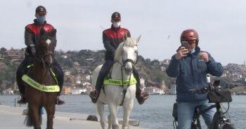 Bebek sahilinde şaşırtan görüntüler yaşandı, turistler telefonlarına sarıldı