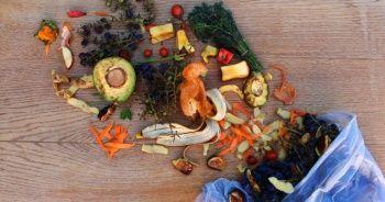 Dünyada her yıl 931 milyon ton gıda çöpe gidiyor