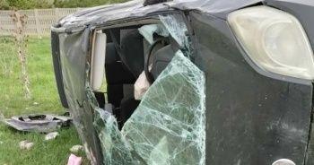 Hafif ticari araç büyükbaş hayvanlara çarptı: 1 yaralı, 2 hayvan telef oldu