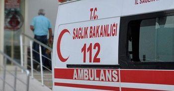 Hayvan saldırısında 60 kişi hastanelik oldu
