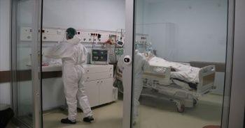 Koronavirüs salgınında son 24 saat