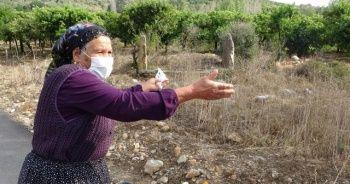 Köylüler kayıp mezardaki yakınlarının kabirlerini arıyor
