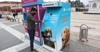 Mamamatikle hem geri dönüşüme hem sokak hayvanlarına destek