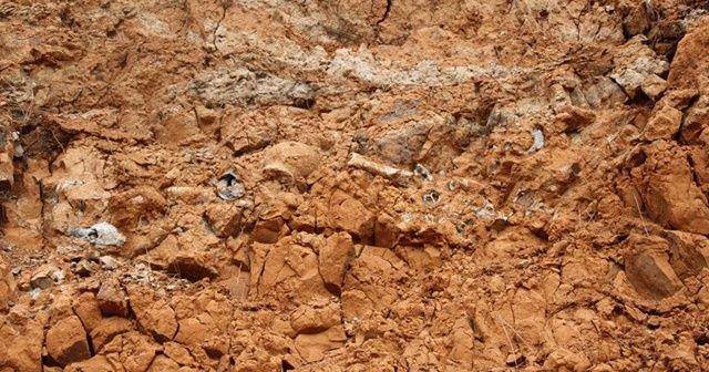 1 milyar yıllık mikro fosil keşfedildi